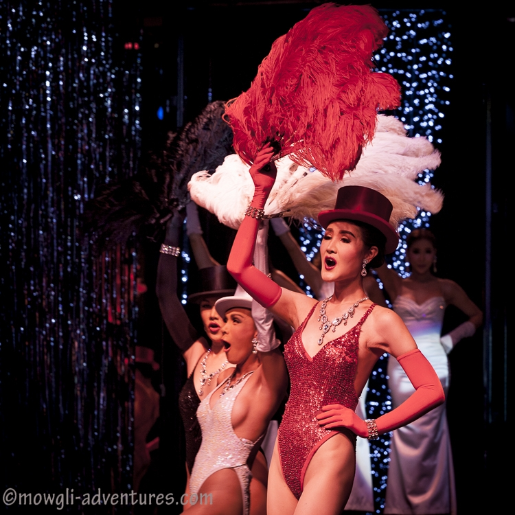 an introduction to the show cabaret Here are the most electrifying cabaret shows in paris january 11th, 2017 by nicola so the introduction of these risqu shows was an immediate hit the lido cabaret show is situated right at the center of the champs-elys es.