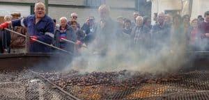 chestnut fiesta