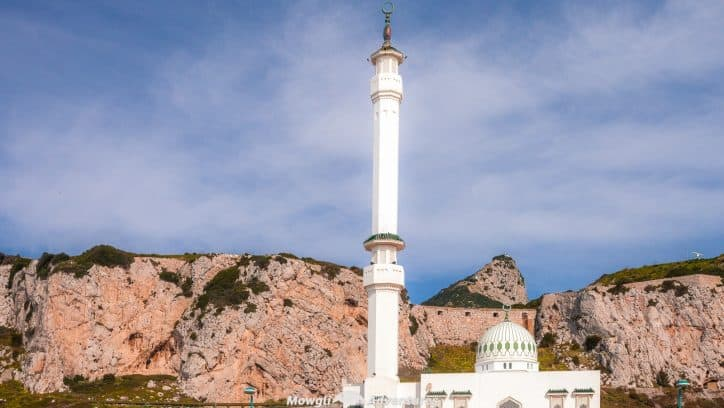 Organised tours of the Rock of Gibraltar can be expensive so weset about finding the cheapest way to see the sights of Gibraltar. It's cheap and easy.