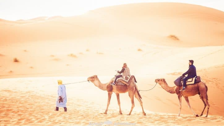 Our Favourite Things To Do In The Sahara Desert Morocco
