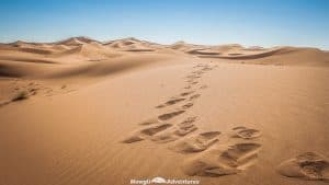 You want to go but you don't know how to get to the Sahara Desert in Morocco without a tour guide! This post has you covered. You drive or even get a bus!