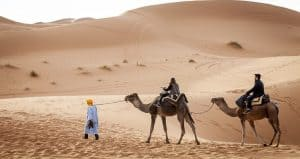 Things to do in the Sahara Desert