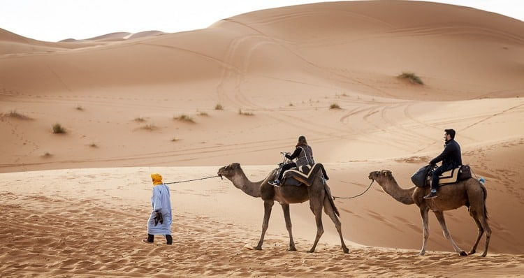 Our Favourite Things To Do In The Sahara Desert