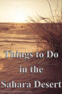 Pinterest - Things to do in the sahara desert