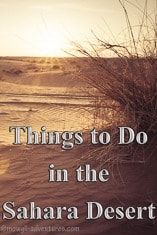 Pinterest - Things to do in the sahara desert
