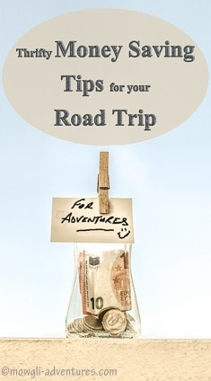 Pinterest - Thrifty Road Trip Money Saving Tips