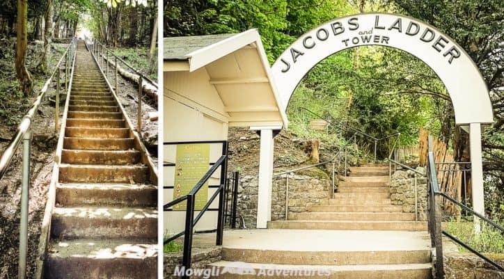 Jacobs Ladder in Cheddar Gorge