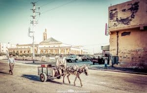 Driving in Morocco is an experience you won't forget in a hurry. If you're vigilant, relaxed and follow these tips you'll find there's nothing to stopyour epic road trip around this incredible country. #Morocco #RoadTrip #DrivingTips #Travel Find out more by clicking on the following link: //mowgli-adventures.com/driving-in-morocco/