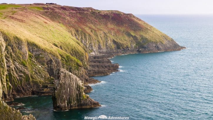 The entire county of Cork in Ireland is incredible so we've whittled the WAW route downto bring you the best scenic drives in Cork. Enjoy! #WAW #WildAtlanticWay #WestCork #RoadTrip Read the full article here: //mowgli-adventures.com/best-scenic-drives-in-cork-ireland/