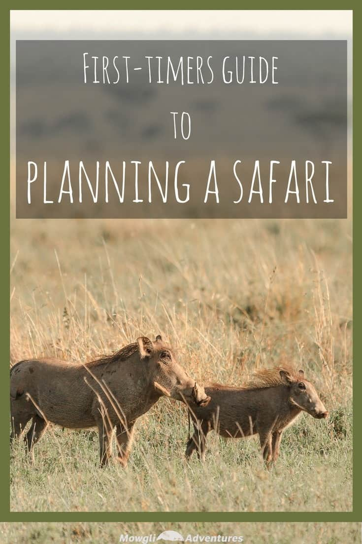 Planning a safari isn't like preparing for your average holiday. Our guide gives you all you need to know about a safari and how to get the most out of your budget. Follow our guide to planning a safari to help you have the trip of a lifetime truly unforgettable. #AfricanSafari #SafariPlanning Read the full post here: http://mowgli-adventures.com/planning-a-safari-guide/
