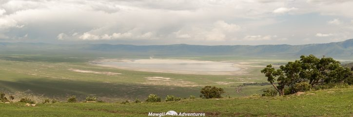 Going on safari in the Serengeti National Park was a huge experience. We had such an amazing time and saw so many things along the way. If you need any convincing, or looking for inspiration, here are a few incredible experiences to have on safari in the Serengeti, Tanzania. #SerengetiSafari #Tanzania Read the full article here: //mowgli-adventures.com/experiences-on-safari-in-the-serengeti