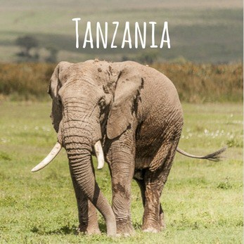 Overland travel in Tanzania