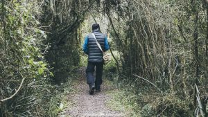 Iberá wetlands - jungle walking trails