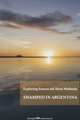 The world's 2nd largest wetlands seeps across 13000 square kilometres of northeastern Argentina. Not so much on the tourist trail and not too easy to get to, Esteros del Iberá wetlands is a wildlife mecca. We couldn't resist a visit on our northbound journey.