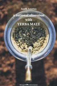 Yerba mate a south american obsession