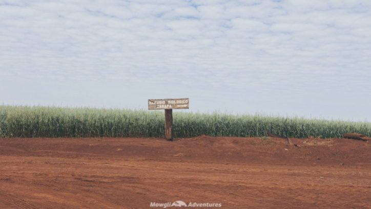 Itaipu Ecological Reserves carapa signpost