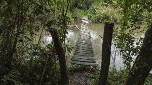 Mbaracayú Forest Nature Reserve
