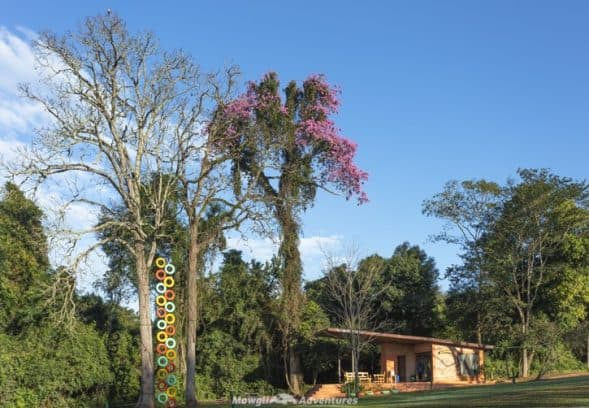 Mbaracayú Forest Nature Reserve lodge