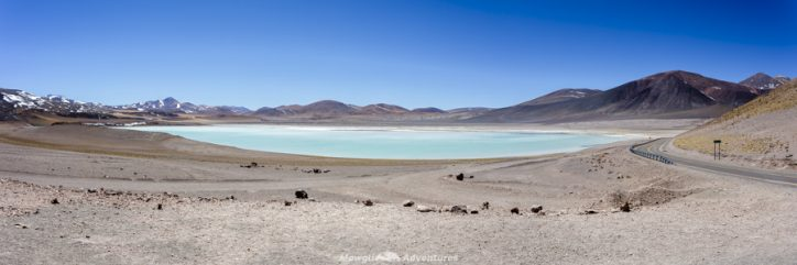 things to do in San Pedro de Atacama -Laguna Tuyaito