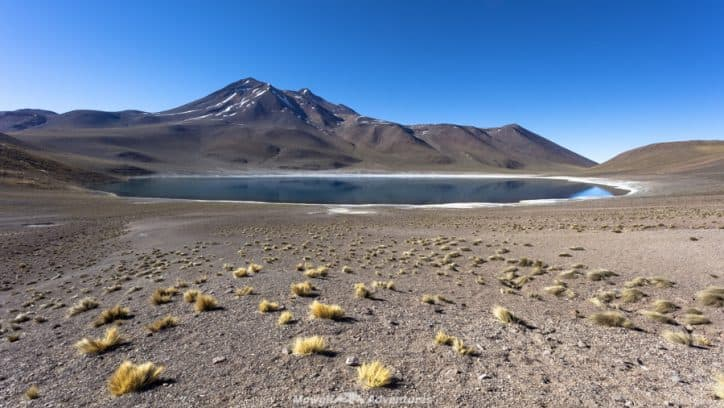 things to do in San Pedro de Atacama - Miñique Lake