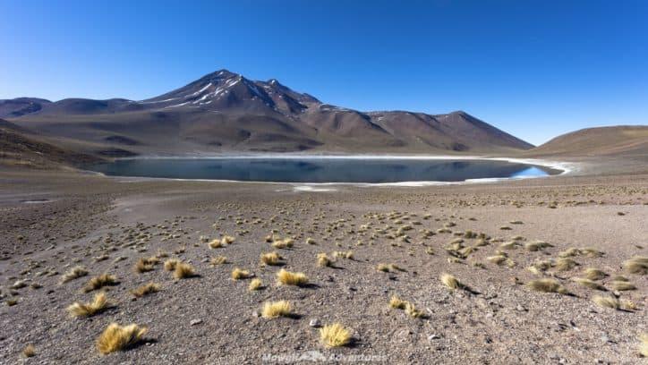 things to do in San Pedro de Atacama - Miñique Lake