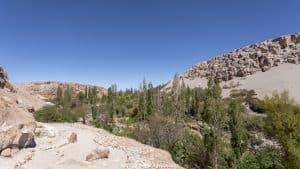 things to do in San Pedro de Atacama - Valle de Jere