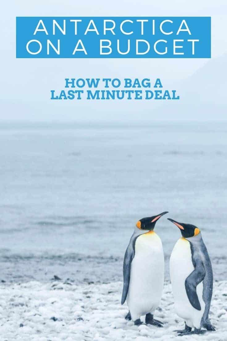 Antarctica travel on a budget doesn't even sound plausible. With forward planning & flexibility you can bag a last minute deal and $000s.