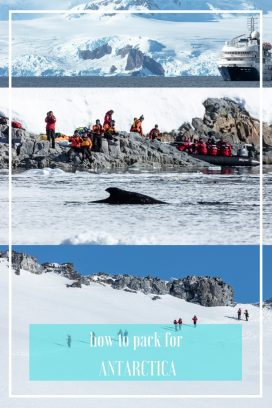 Ultimate guide to packing for the Antarctica