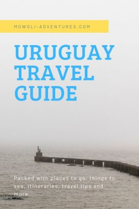 Plan a Trip to Uruguay - Uruguay travel tips from someone who drove around the country for almost 4 months. #uruguay #travel #traveltips #southamerica