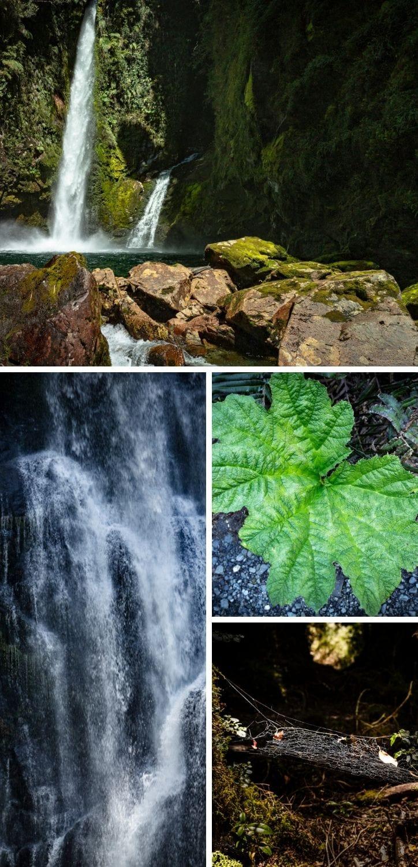 Cascadas Escondidas in Pumalin Park Patagonia Chile hike