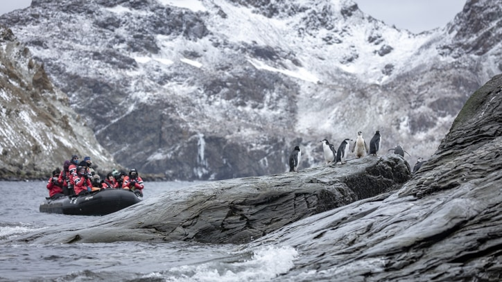 Zodiac cruise with Chinstrap penguins