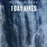 4 day hikes in Pumalin Park, Patagonia Chile to get you limbered up before your driving adventure along the Carretera Austral.