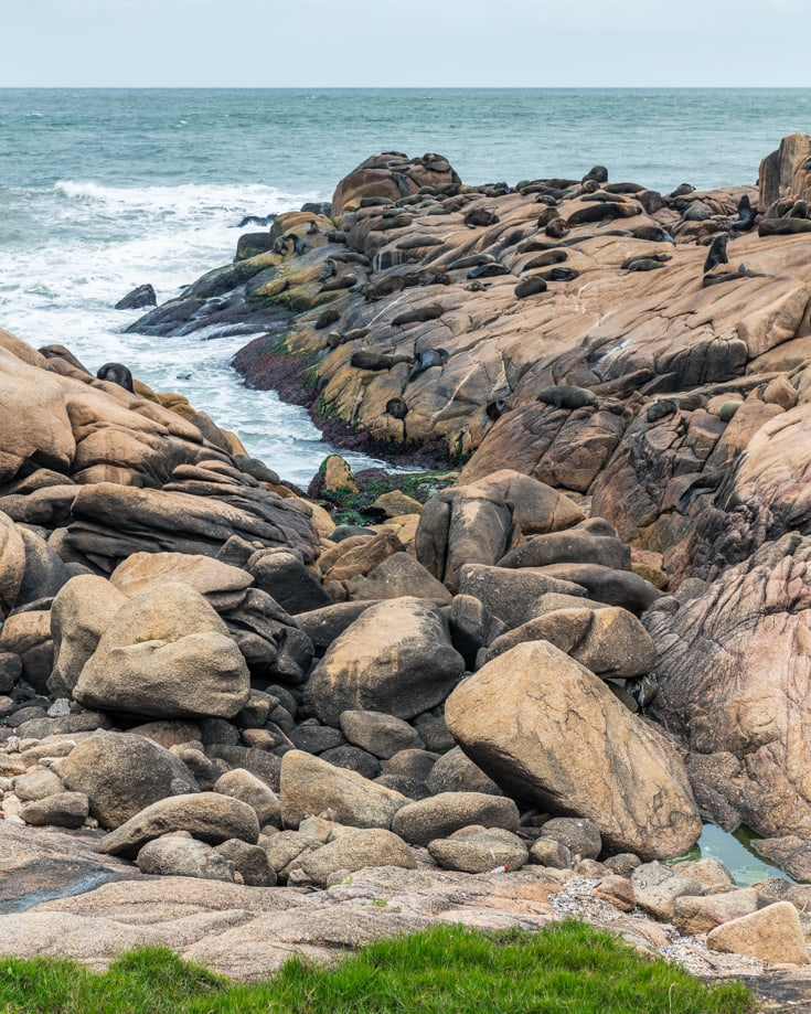 Looking out to sea over the rocks with lots of sea lions lying on them. The 2nd largest sea lion colony in Uruguay is here at Cabo Polonio.