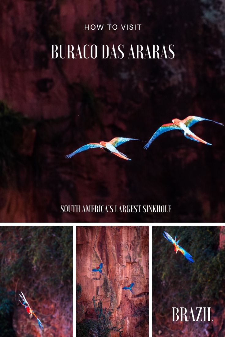 How to visit Buraco das Araras Macaws Sinkhole Brazil