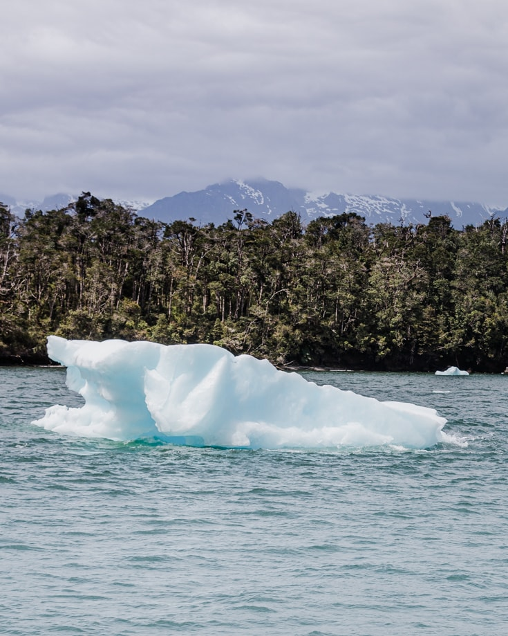 A iceberg floating in San Rafael lagoon with green forest behind it
