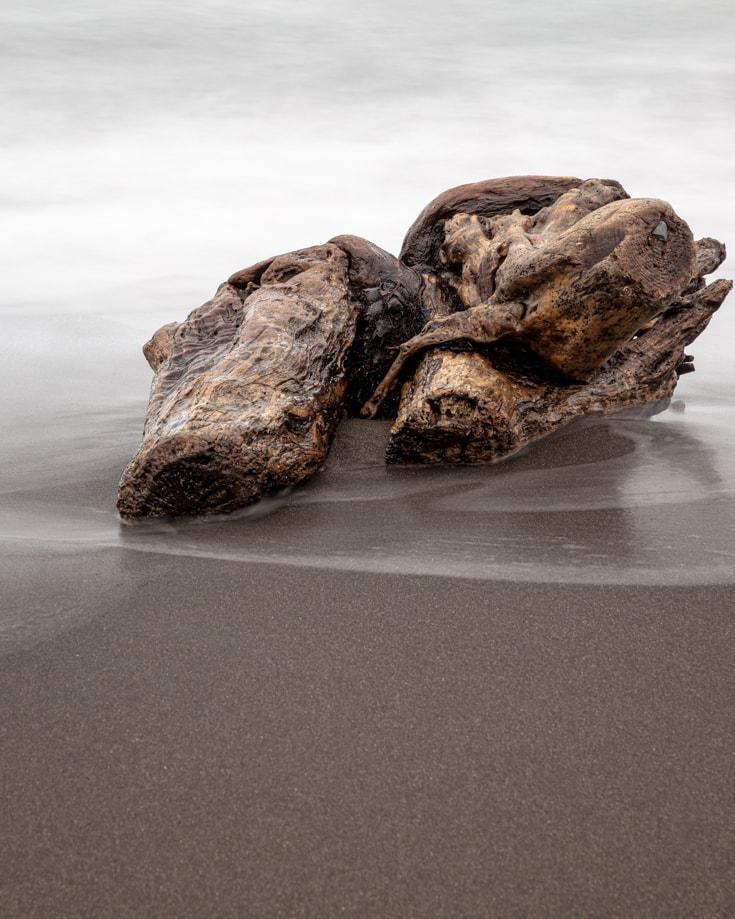 Driftwood on the black sand beach near Pumalin Park