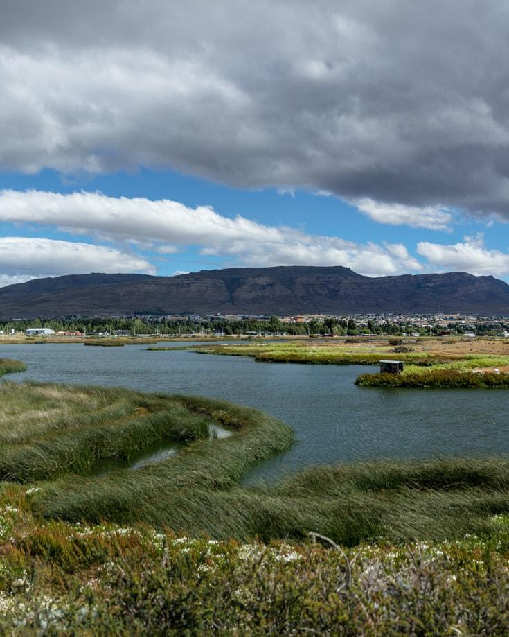 Laguna Nimez in El Calafate, Patagonia