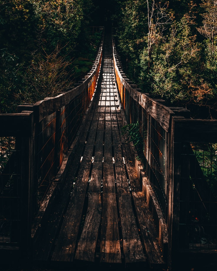 a wooden suspension bridge in a forest