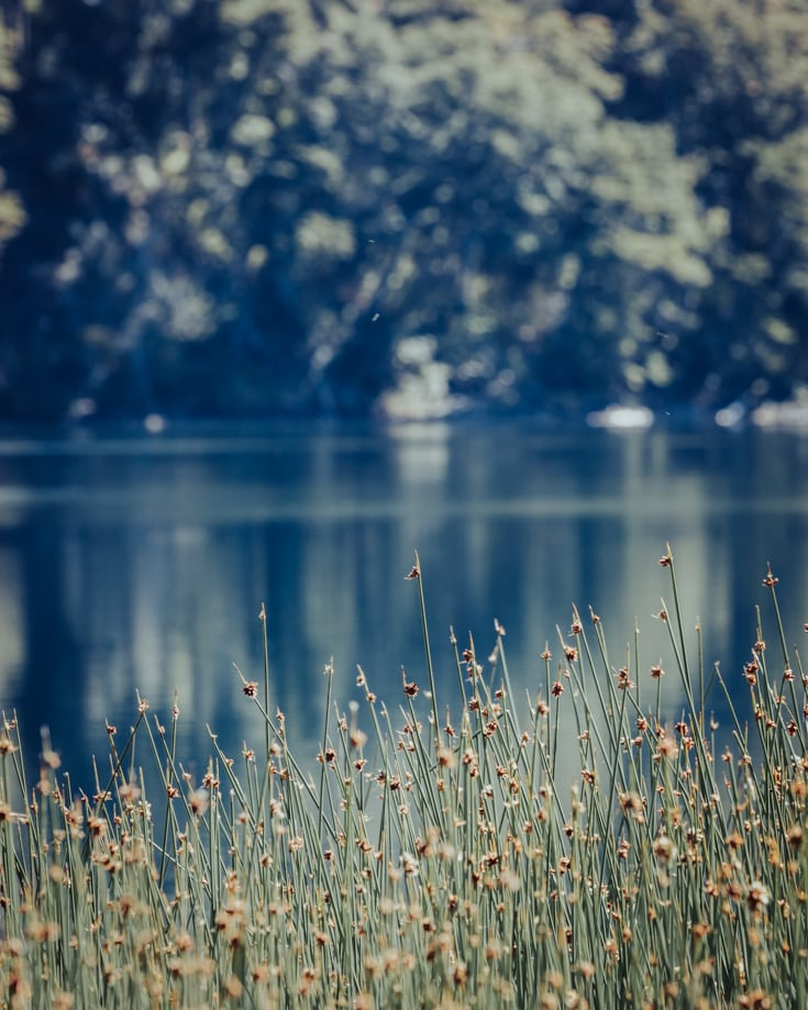 Lago Machinico