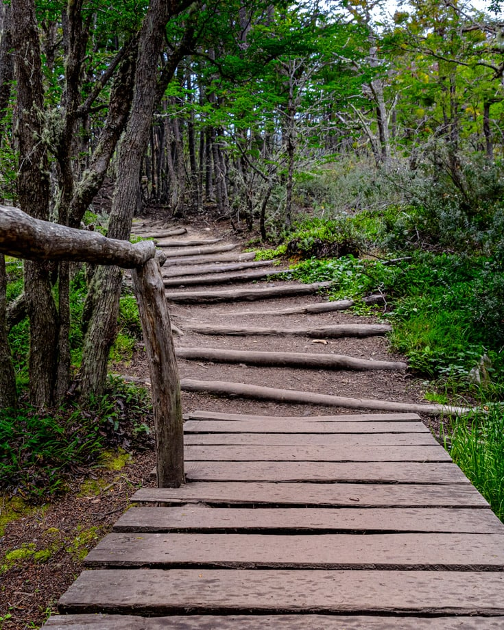 Wooden paths on Tierra del Fuego National Park hiking trails