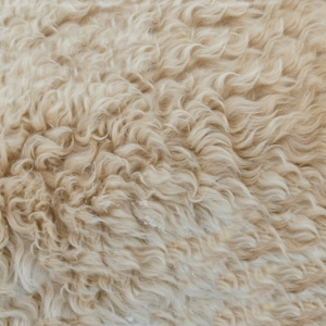 close up of campervan merino wool mattress topper, one of our favourite campervan accessories