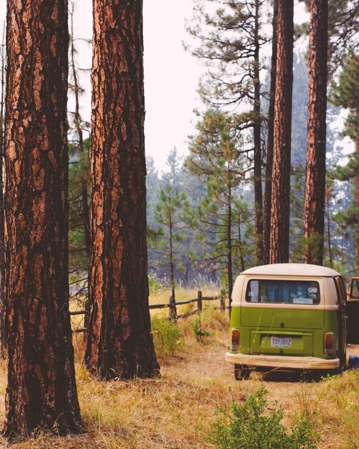 campervan living off grid in a forest