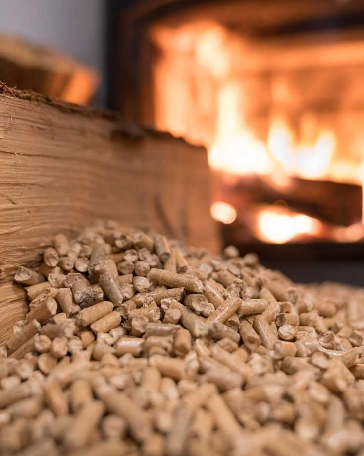 Fuel for RV wood stove