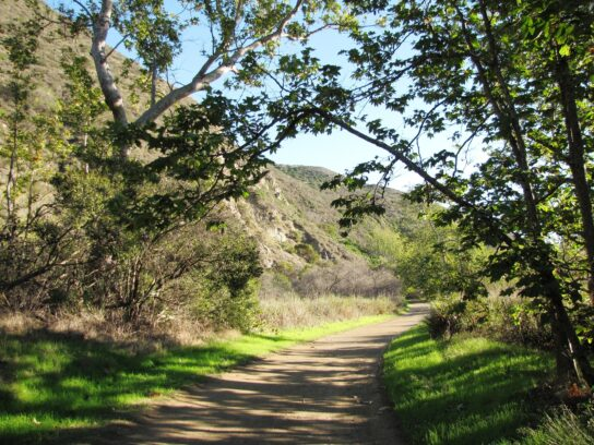 Sycamore Canyon Campground
