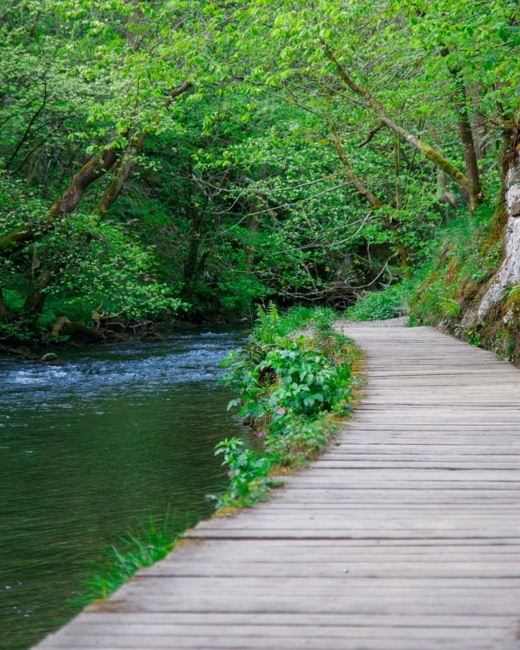 Wooden path along the River Dove