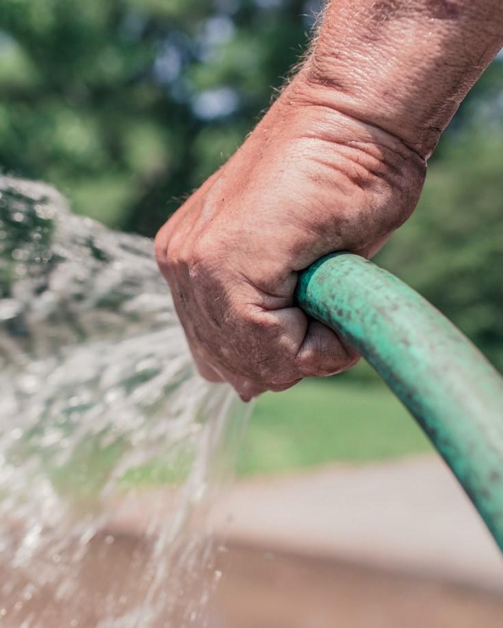 garden hose spraying water