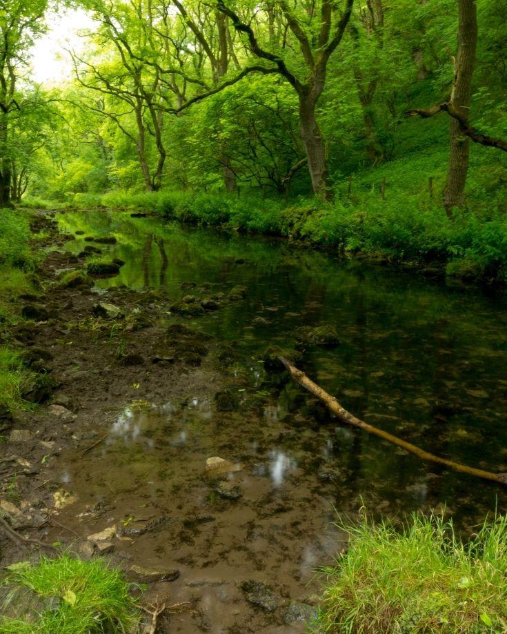 River Lathkill as seen walking through the Dale